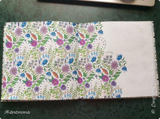 Таинственный сад. Раскрасила самую первую иллюстрацию, которая идет сразу после обложки)) (совершенно не помню как называется этот разворот...) фото 2