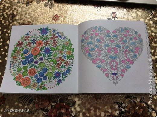 Таинственный сад. Раскрасила самую первую иллюстрацию, которая идет сразу после обложки)) (совершенно не помню как называется этот разворот...) фото 3