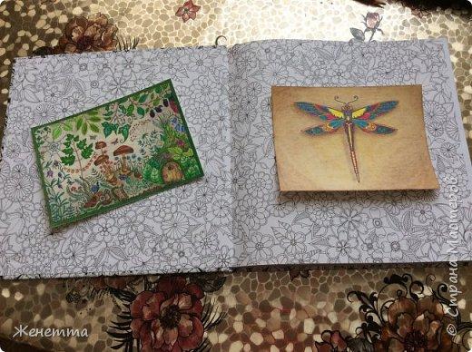 Таинственный сад. Раскрасила самую первую иллюстрацию, которая идет сразу после обложки)) (совершенно не помню как называется этот разворот...) фото 12