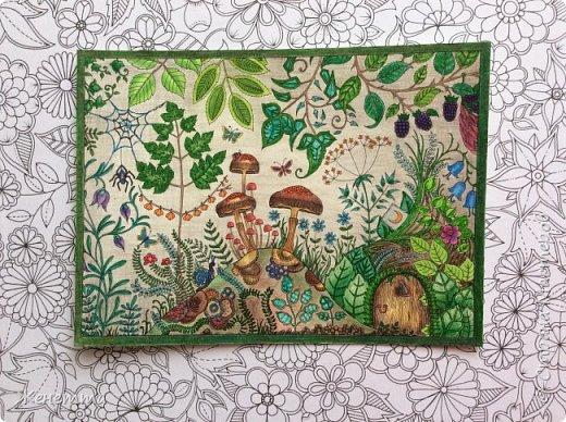 Таинственный сад. Раскрасила самую первую иллюстрацию, которая идет сразу после обложки)) (совершенно не помню как называется этот разворот...) фото 14