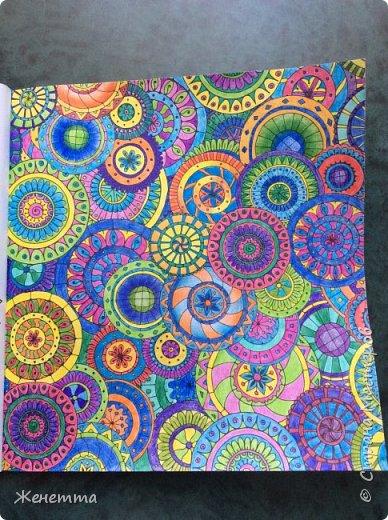 Таинственный сад. Раскрасила самую первую иллюстрацию, которая идет сразу после обложки)) (совершенно не помню как называется этот разворот...) фото 7
