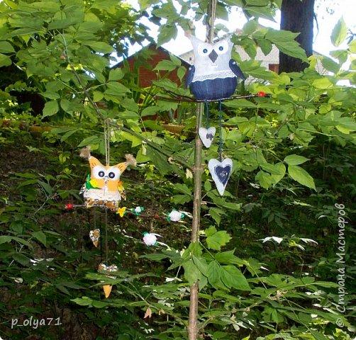 Здравствуйте!!! Вот и у меня теперь есть Совушки! )) фото 12