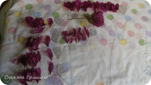 Здравствуйте дорогие жители Страны Мастеров!!! Сегодня я разобрала пион ,может кому то будет интересно и послужит наглядным примером для создания цветов из фоамирана и холодного фарфора или п/глины.... фото 14