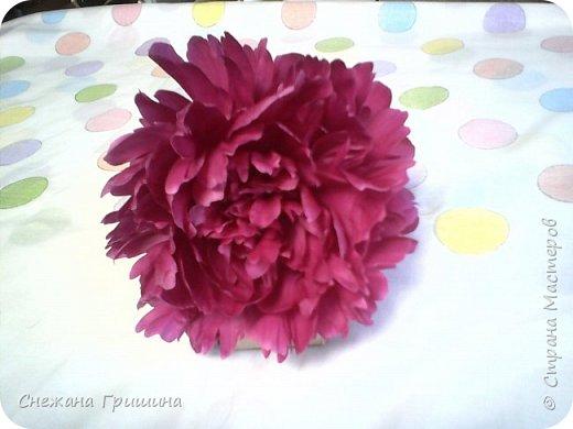 Здравствуйте дорогие жители Страны Мастеров!!! Сегодня я разобрала пион ,может кому то будет интересно и послужит наглядным примером для создания цветов из фоамирана и холодного фарфора или п/глины.... фото 2