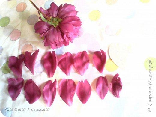 Здравствуйте дорогие жители Страны Мастеров!!! Сегодня я разобрала пион ,может кому то будет интересно и послужит наглядным примером для создания цветов из фоамирана и холодного фарфора или п/глины.... фото 3