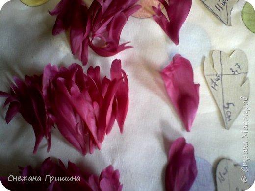 Здравствуйте дорогие жители Страны Мастеров!!! Сегодня я разобрала пион ,может кому то будет интересно и послужит наглядным примером для создания цветов из фоамирана и холодного фарфора или п/глины.... фото 9