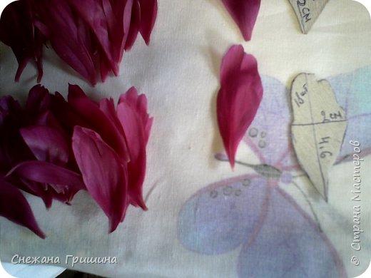 Здравствуйте дорогие жители Страны Мастеров!!! Сегодня я разобрала пион ,может кому то будет интересно и послужит наглядным примером для создания цветов из фоамирана и холодного фарфора или п/глины.... фото 10