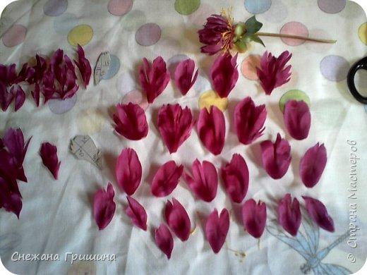 Здравствуйте дорогие жители Страны Мастеров!!! Сегодня я разобрала пион ,может кому то будет интересно и послужит наглядным примером для создания цветов из фоамирана и холодного фарфора или п/глины.... фото 15