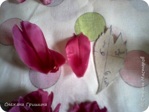 Здравствуйте дорогие жители Страны Мастеров!!! Сегодня я разобрала пион ,может кому то будет интересно и послужит наглядным примером для создания цветов из фоамирана и холодного фарфора или п/глины.... фото 16