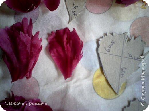 Здравствуйте дорогие жители Страны Мастеров!!! Сегодня я разобрала пион ,может кому то будет интересно и послужит наглядным примером для создания цветов из фоамирана и холодного фарфора или п/глины.... фото 17