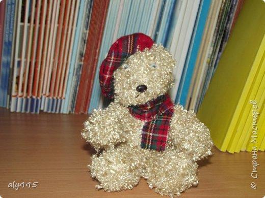 Медведь шотландец фото 1
