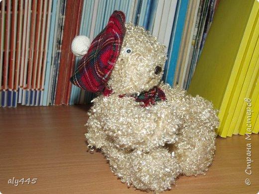Медведь шотландец фото 2