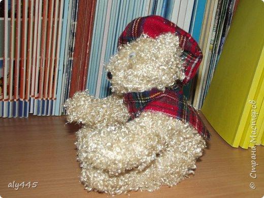 Медведь шотландец фото 3