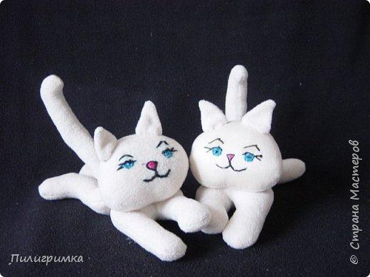 Коты сшиты из флиса. фото 1