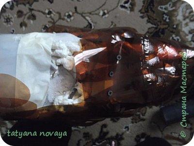 Добрый день всем жителям СМ! Хочу поделиться опытом по созданию лебедей из пластика. Я покажу как выполняла чёрного лебедя и немного белого. фото 18