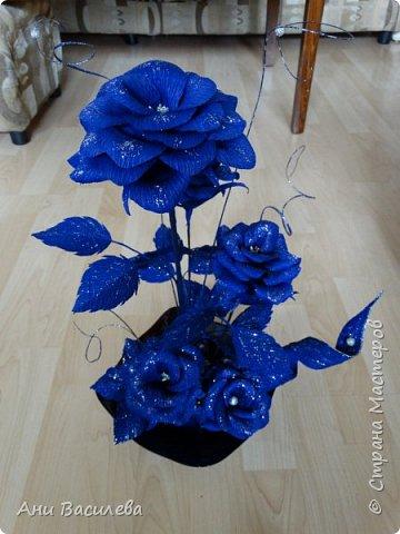 рози в сребърно-синьо фото 4