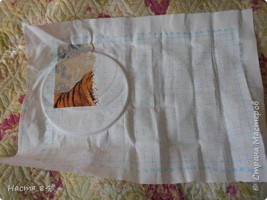 Полгода вышивала я тигров. Пока это самая большая картина, которую я вышила (35х52). Решила немного показать процесс да и для себя оставить память. Вышивала в подарок дядюшке. Итак, начнём историю! фото 3