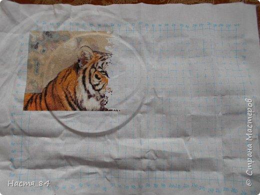 Полгода вышивала я тигров. Пока это самая большая картина, которую я вышила (35х52). Решила немного показать процесс да и для себя оставить память. Вышивала в подарок дядюшке. Итак, начнём историю! фото 4