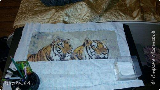 Полгода вышивала я тигров. Пока это самая большая картина, которую я вышила (35х52). Решила немного показать процесс да и для себя оставить память. Вышивала в подарок дядюшке. Итак, начнём историю! фото 6