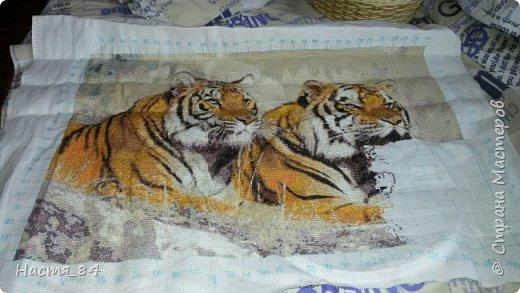 Полгода вышивала я тигров. Пока это самая большая картина, которую я вышила (35х52). Решила немного показать процесс да и для себя оставить память. Вышивала в подарок дядюшке. Итак, начнём историю! фото 8