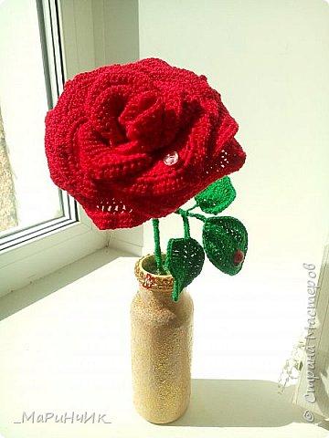 Красная РОЗА. фото 2