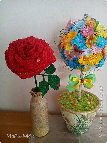 Красная РОЗА. фото 5