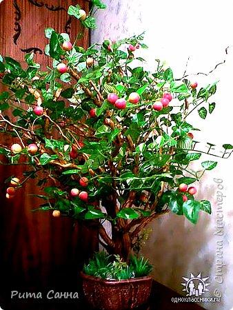 ПЕРСИК - корень , листики из ткани и персики с пенопласта ( из магазина ) фото 4