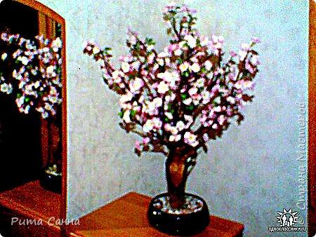 ПЕРСИК - корень , листики из ткани и персики с пенопласта ( из магазина ) фото 6