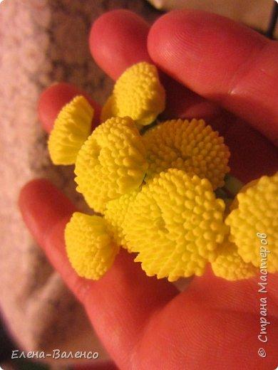 Здравствуйте, дорогие умельцы! Как и обещала выкладываю процесс заливки молдов из литьевого силикона.  фото 26