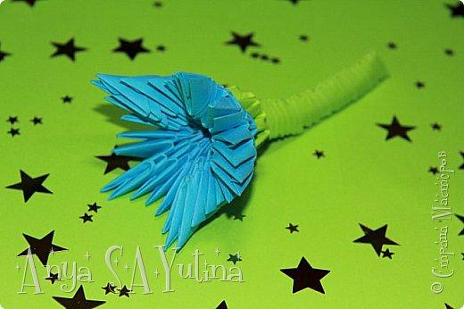 Здравствуйте) Сейчас я вам расскажу и покажу, как делать этот голубой цветок техникой модульное оригами. Чтобы посмотреть урок, спуститесь чуть ниже по странице:) фото 1
