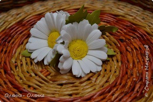 Ромашки - нежнейшие цветочки. фото 2