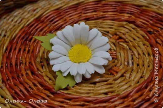 Ромашки - нежнейшие цветочки. фото 1