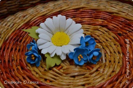 Ромашки - нежнейшие цветочки. фото 4