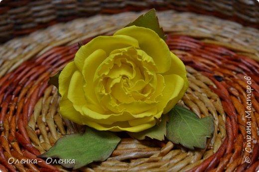 Цветочное ассорти фото 4