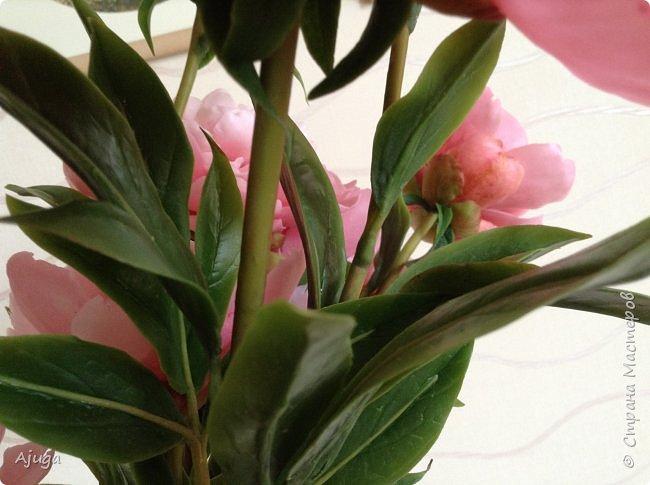 Пион, теперь уже с листьями .ручная работа . Лепка. Холодный фарфор. фото 6