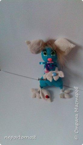 Бикимора фото 2