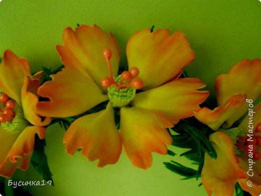 Желтый ободочек фото 2
