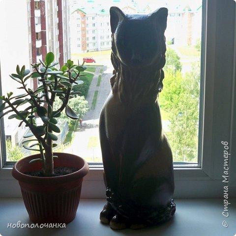 Дочь попросила сделать  кошку на окно. Как  и  из чего эта кошка сделана,  показано в моём   МК. фото 55