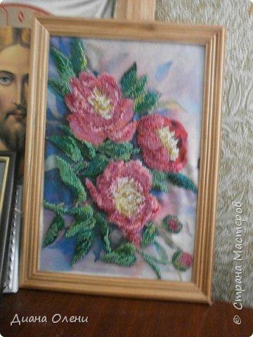 Ксения Петербурская в рамке со стеклом фото 10