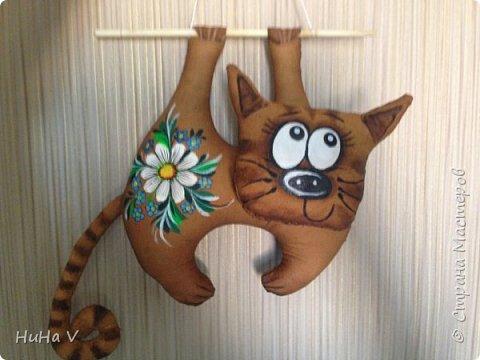 Котик фото 10