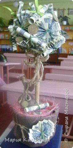 пробное дерево.... фото 4