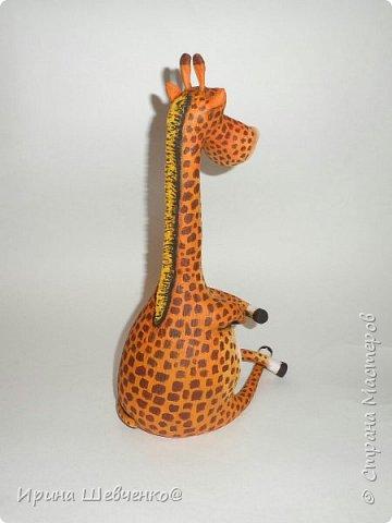 Жираф и кактусы)) фото 3