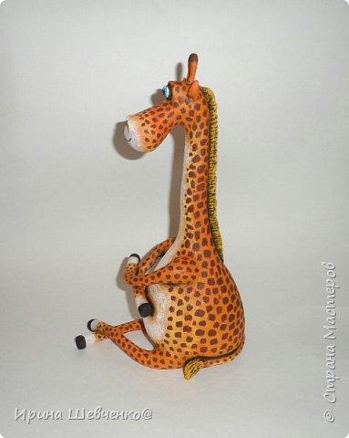 Жираф и кактусы)) фото 1