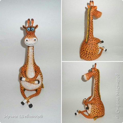 Жираф и кактусы)) фото 13