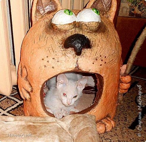 Здравствуйте.вот такой домик состряпался сестрёнкиному коту фото 2