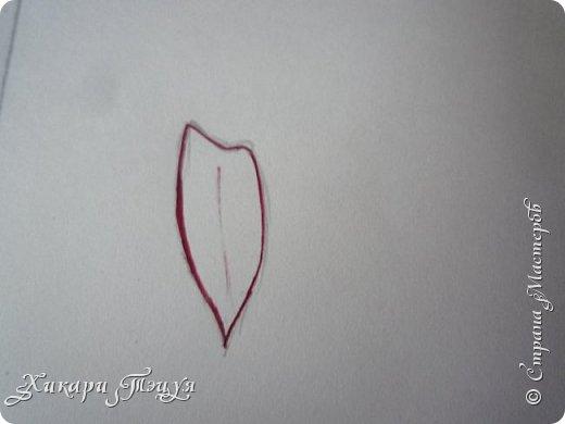 Здравствуйте! Ну вот и обещанный МК девушки-аниме. Правда, только первая часть. Но на большее пока нет времени.  Сегодня мы нарисуем ее карандашом, обведем ручками и разрисуем голову.  Для работы нам нужно: простой карандаш и ластик, цветные ручки, цветные карандаши и корректор, можно еще взять фломастеры, так как я не знаю, пригодятся они нам или нет, потому что фоткаю по ходу того, как рисую. фото 25