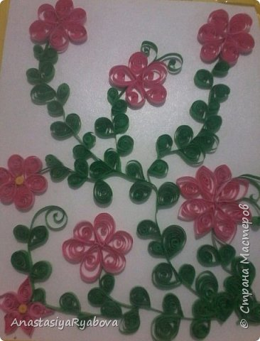 Цветы в розовом цвете