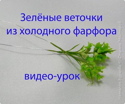 Украшением букета  являются не только цветы, но и зелень. В данном мастер-классе Вы научитесь лепить зеленую веточку из холодного фарфора. фото 1