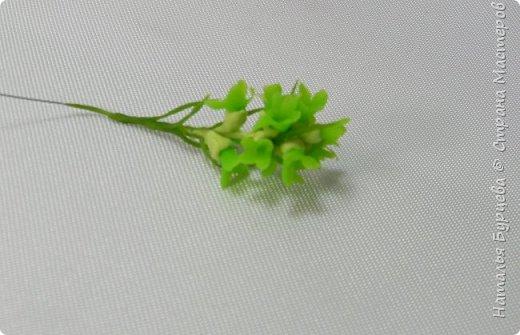 Украшением букета  являются не только цветы, но и зелень. В данном мастер-классе Вы научитесь лепить зеленую веточку из холодного фарфора. фото 2