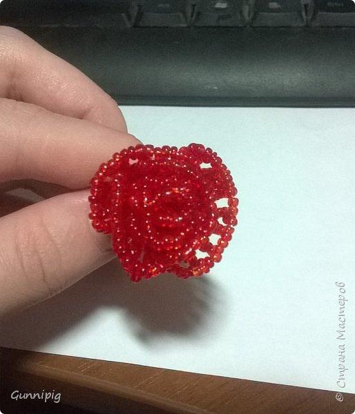 Вот такая красная плетистая розочка у меня получилась. Решила также выложить пошаговый процесс ее создания, мало ли, кому пригодится) фото 9